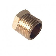 "Brass 3/8"" Male BSP Thread Blanking bung"